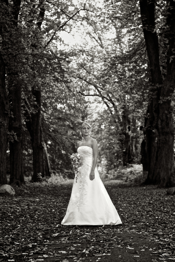 H+M Wedding No.03