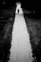 Walking a Brighter Path